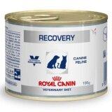 ซื้อ Royal Canin Recovery อาหารสำหรับสุนัขและแมว พักฟื้น 195G 7 Units ออนไลน์