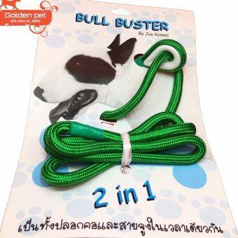 สายจูงประกวดสุนัข 2 in 1 Bull Buster สีเขียว