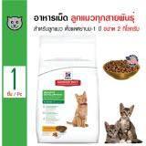 ซื้อ Science Diet Kitten อาหารแมว สูตรสำหรับลูกแมว และแมวระยะตั้งท้องให้นม สำหรับลูกแมวและแม่แมว ขนาด 2 กิโลกรัม Science Diet ถูก