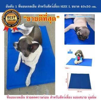 ที่นอนเจลเย็นหมา แผ่นเจลรองนอนหมา แผ่นเจลเย็นสุนัข ที่นอนเจลเย็นสำหรับสุนัข (Size L 40x50 cm.)