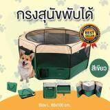 ส่วนลด คอกหมาพับได้ คอกสุนัขพับได้ กรงสุนัขพับได้ กรงหมาพับได้ และกรงแมวพับได้ กางและพับเก็บได้ง่าย สีเขียว Size L ขนาด 60X100 Cm กรุงเทพมหานคร