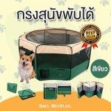 ซื้อ คอกหมาพับได้ คอกสุนัขพับได้ กรงสุนัขพับได้ กรงหมาพับได้ และกรงแมวพับได้ กางและพับเก็บได้ง่าย สีเขียว Size L ขนาด 60X100 Cm ออนไลน์ ถูก