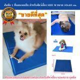 ขาย ที่นอนเจลเย็นหมา แผ่นเจลรองนอนหมา แผ่นเจลเย็นสุนัข ที่นอนเจลเย็นสำหรับสุนัข Size M 30X40 Cm Easymall