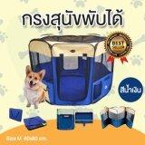 ขาย คอกหมาพับได้ คอกสุนัขพับได้ กรงสุนัขพับได้ กรงหมาพับได้ และกรงแมวพับได้ กางและพับเก็บได้ง่าย สีน้ำเงิน Size M ขนาด 60X80 Cm Smartshopping ใน ไทย