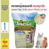 ขาย Smartcat ทรายแมวหญ้าธรรมชาติ ปลอดภัย ไร้ฝุ่น ไร้กลิ่น สำหรับแมวทุกวัย ขนาด 9 08 กิโลกรัม 20 Lbs ออนไลน์