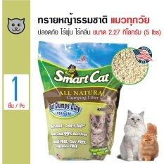 ส่วนลด Smartcat ทรายแมวหญ้าธรรมชาติ ปลอดภัย ไร้ฝุ่น ไร้กลิ่น สำหรับแมวทุกวัย ขนาด 2 27 กิโลกรัม Smartcat กรุงเทพมหานคร