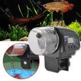 ซื้อ Tml เครื่องให้อาหารปลาอัตโนมัติ แบบตั้งเวลาได้ Automatic Fish Feeder รุ่น Aff1 02At Tml ออนไลน์