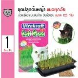 ราคา Vitakraft ชุดปลูกต้นหญ้า หญ้าข้าวสาลี ช่วยกระตุ้นระบบการย่อย ขับก้อนขน สำหรับแมวทุกวัย ขนาด 120 กรัม ใหม่ล่าสุด