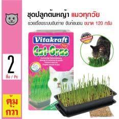 ขาย Vitakraft ชุดปลูกต้นหญ้า หญ้าข้าวสาลี ช่วยกระตุ้นระบบการย่อย ขับก้อนขน สำหรับแมวทุกวัย ขนาด 120 กรัม X 2 แพ็ค Vitakraft เป็นต้นฉบับ