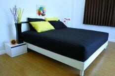 ขาย Cotton Soft ชุดผ้าปูที่นอน รุ่น Base Soft 3 5 ฟุต 3 ชิ้น Black เป็นต้นฉบับ