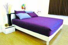 ซื้อ Cotton Soft ชุดผ้าปูที่นอน รุ่น Purple Base Soft 6 ฟุต 5 ชิ้น ใหม่