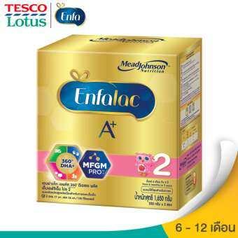 ENFALAC เอนฟาแลค นมผงสำหรับเด็ก ช่วงวัยที่ 2 เอพลัส2 360ํ ดีเอชเอพลัส เอ็มเอฟจีเอ็ม โปร 1650กรัม-