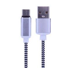 ราคา 2 4A Magnetic Usb Type C High Speed Charging Metal Pc Nylon Woven Cable Silver Intl ออนไลน์ จีน