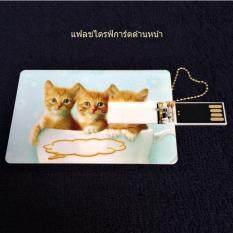 Cute Kitten Thumb Drive, Lovely Cat Card Flash Drive แฟลชไดรฟ์แบบการ์ดขนาด 8gb รูปน้องแมวน่ารัก สามารถเขียนคำอวยพรบนการ์ดได้.