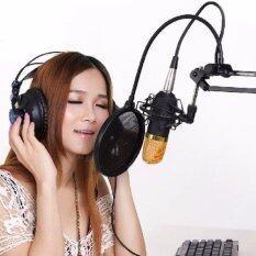 ขาย ซื้อ ออนไลน์ ไมโครโฟน Pro Condenser Microphone Bm800 พร้อม ชุดขาตั้งไมค์โครโฟน