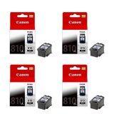 ราคา Canon หมึกพิมพ์ Inkjet รุ่น Pg 810 Bk จำนวน 4 กล่อง เป็นต้นฉบับ