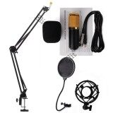 ขาย Elit ไมค์ ไมค์อัดเสียง คอนเดนเซอร์ Pro Condenser Mic Microphone Bm800 พร้อม ขาตั้งไมค์โครโฟน และอุปกรณ์เสริม