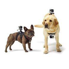ราคา Gopro Buyanyway ชุด Gopro Sjcam Xiaomi Yi For Dog ไว้ใช้กับสัตว์เลี้ยง ใหม่