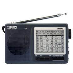 High Sensitivity Tecsun R 9012 12 Band Fm Am Sw Radio Receiver Gray Intl จีน