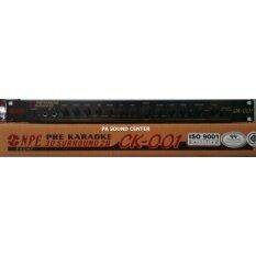 NPE ปรีแอมป์คาราโอเกะ PRE AMP สีดำ CK 001 2BB