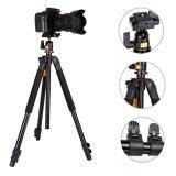 ขาย Qzsd Q308 By 9Final Tripod ขาตั้งกล้อง พร้อมหัวบอล Qzsd 04 Model เดียวกับ Beike Bk 308 สูง 1 5 เมตร เป็นต้นฉบับ