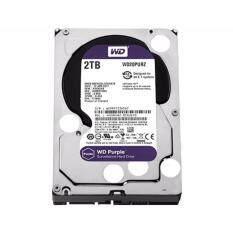 WD HARD DISK INTERNAL  2.0TB WD SATA-III 64 MB (WD20PURZ) PURPLE