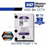 ส่วนลด Wd Purple 1Tb 3 5 Harddisk For Cctv Wd10Purz สีม่วง By Synnex