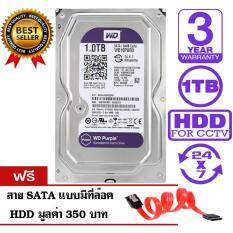 WD Purple 1TB for CCTV - WD10PURX (สีม่วง) รับประกัน 3 ปี แถมฟรีสาย SATA HDD