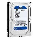 Wd Storage Desktop Hard Drives 1Tb Sata Iii 7200Rpm 64Mb 3 5 N Caviar Blue Wd10Ezex ถูก
