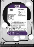ทบทวน ที่สุด Wd Surveillance Storage 1Tb Desktop Hard Drives Sata 6Gb S 64Mb 3 5 สีม่วง Wd10Purz