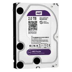 ซื้อ Wd Surveillance Storage Desktop Hard Drives 2Tb Sata Iii 64Mb 3 5 Purple Wd20Purx