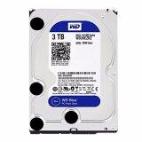 ขาย ซื้อ Western Hdd Hard Disk Internal 3 0Tb Wd Sata Iii 64Mb Wd30Ezrz Blue