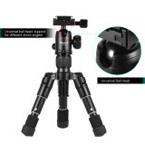 ราคา Xiletu Ultra Compact Desktop Mini Tripod Kit With Ball Head For Canon Nikon Dslr Camera Unbranded Generic
