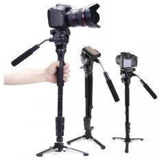ราคา Yunteng ขาตั้งโมโนพอด ขาตั้งกล้อง Yunteng รุ่น Vct 288 Photo Video Aluminum Monopod Black ถูก