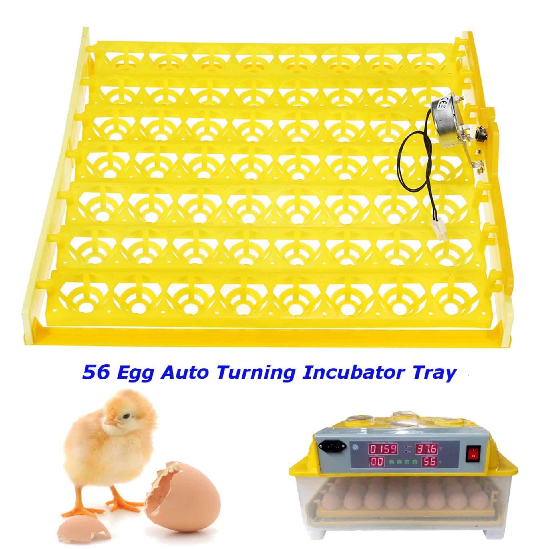 56 ไข่สัตว์ปีกเครื่องฟักไข่ไก่ Turner ถาดมอเตอร์หมุนอุณหภูมิควบคุม