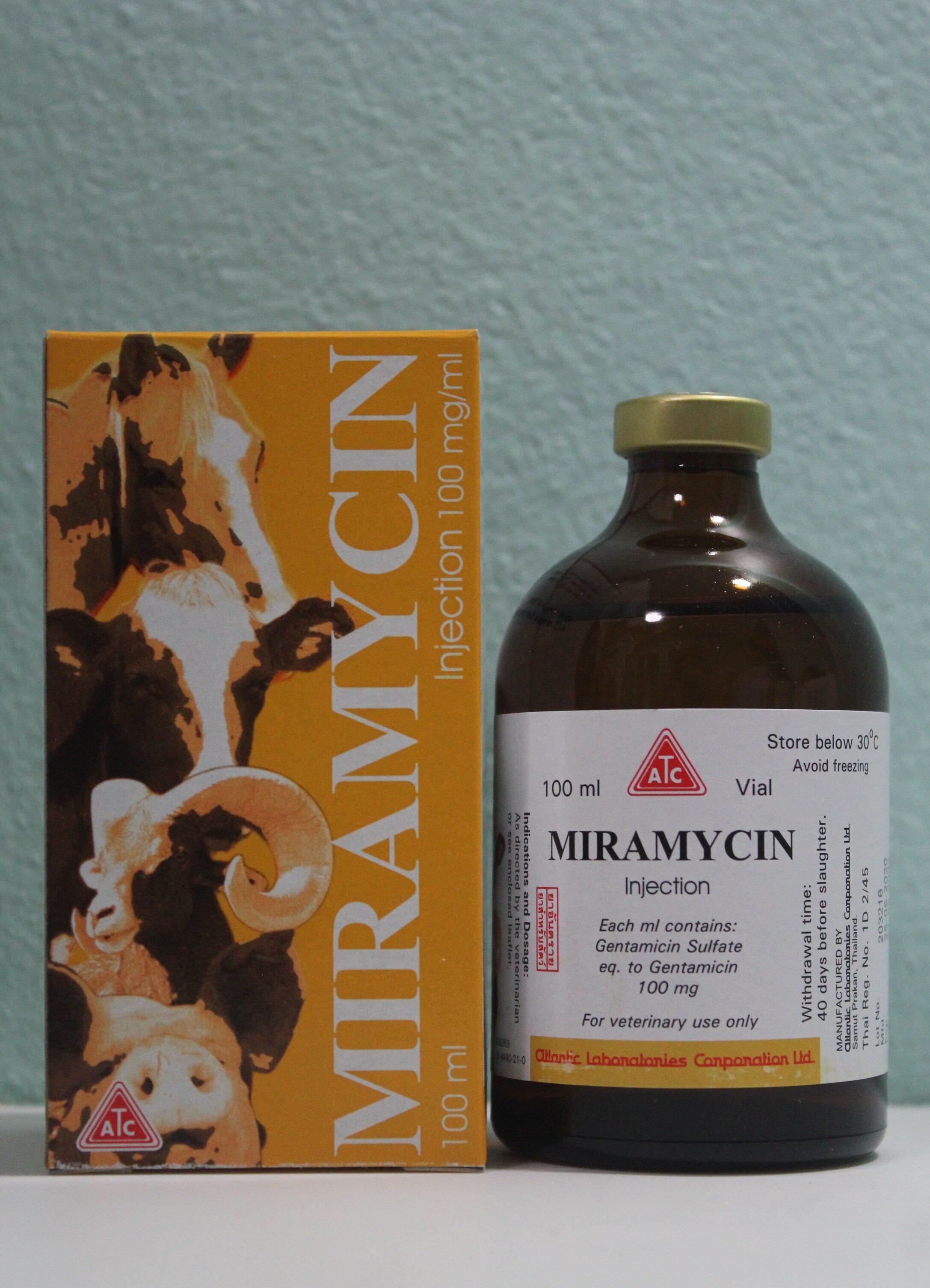 Lista de flebotonice (venotonice), o prezentare generală a medicamentelor în tratamentul varicelor