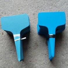 ราคา 100Pcs T Type Plastic Plant Flower Tags Nursery Garden Labels Markers Blue Intl Unbranded Generic เป็นต้นฉบับ