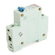 ขาย 25A Miniature Circuit Breaker Dz47 63 Ac230 400V 1 Pole Overload Proetction Intl Unbranded Generic ถูก