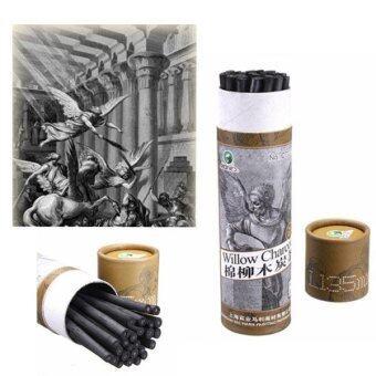 25 ชิ้นอาชีพดินสอวาดภาพวาด Charcoal บาร์ศิลปินศิลปะ Supply