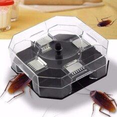 ส่วนลด ที่ดักแมลงสาบ กล่องดักจับแมลงสาบ 4 ทิศทาง พร้อมเหยื่อล่อ None กรุงเทพมหานคร