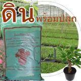 ทบทวน ดินพร้อม ปลูก ต้นไม้ พืชดอก ไม้ดอก ไม้ประดับ ขนาด 4 Kg Unbranded Generic