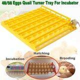 ทบทวน ที่สุด 55 Egg Automatic Incubator Tray Digital Hatching Chicken Temperature Control Intl