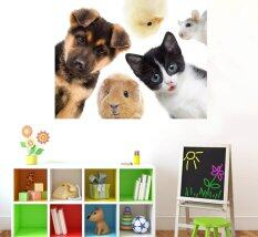 ซื้อ Anoogo Moda สติ๊กเกอร์ติดผนัง Animals ออนไลน์