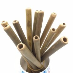Bamboo Straws Natural Drinking Straws Set Of 12 - Intl.