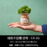 ส่วนลด ในร่มขนาดเล็กกระถางต้นไม้จำลอง Bonsaii มินิ Succulents ดอกไม้ประดิษฐ์เฟอร์นิเจอร์ Unbranded Generic ฮ่องกง