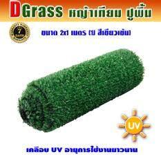 Dgrass หญ้าเทียม ปูพื้น ตกแต่งสวน ขนาดเล็ก ความสูง 1 ซม. ขนาด 2 X 1 เมตร Dg-1j (สีเขียวเข้ม).