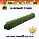ทบทวน Dgrass หญ้าเทียม ปูพื้น ตกแต่งสวน ขนาดเล็กสูง 1 ซม รุ่น Dg 1K สีเขียวขี้ม้า ขนาด 2 X 3 เมตร