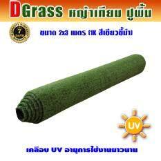 ราคา Dgrass หญ้าเทียม ปูพื้น ตกแต่งสวน ขนาดเล็กสูง 1 ซม รุ่น Dg 1K สีเขียวขี้ม้า ขนาด 2 X 3 เมตร Dgrass เป็นต้นฉบับ