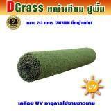 Dgrass หญ้าเทียม ปูพื้น ตกแต่งสวน ความสูง 2 ซม รุ่น 2 Atrium 2A มีหญ้าแห้ง ขนาด 2 X 3 เมตร กรุงเทพมหานคร