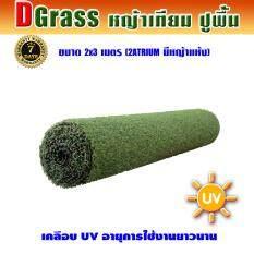 ราคา Dgrass หญ้าเทียม ปูพื้น ตกแต่งสวน ความสูง 2 ซม รุ่น 2 Atrium 2A มีหญ้าแห้ง ขนาด 2 X 3 เมตร ใหม่